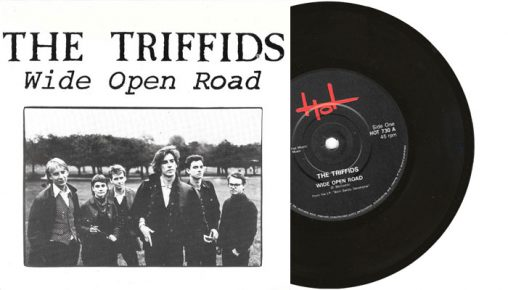 """The Triffids - Wide Open Road - 7"""" vinyl single from 1986"""